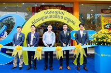 MWG's Bluetronics to reach triple the size of largest competitor in Cambodia