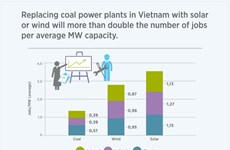 Vietnam's Updated Climate Goals Aim at Maximizing the Co-Benefits of Climate Action: researchers