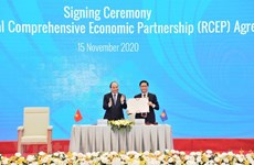 """Together with CPTPP, RCEP offers ideal economic models"""