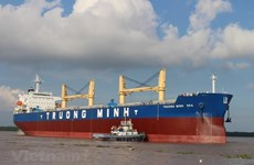 Solutions needed for domestic shipping fleet to win market