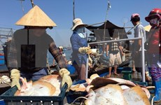 Fisheries sector reaches out to ocean to develop marine economy