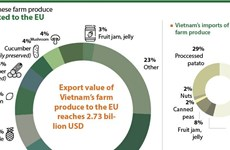 Two-way trade of Vietnam-EU fruit and vegetables sees high growth
