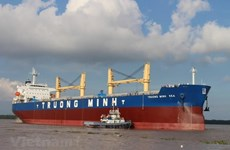 Maritime transport sector: positive growth but unsteady