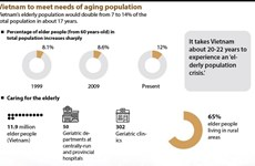 Vietnam to meet needs of aging population