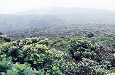 Discovering Kon Ka Kinh National Park, Gia Lai's 'rooftop'