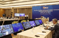 RCEP intersessional ministerial meeting held online