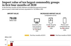 Import value of ten largest commodity groups in first four months of 2020