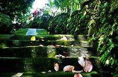 Ancient Loc Yen village seeks ways to promote eco-tourism