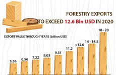 Forestry exports to exceed 12.6 bln USD in 2020