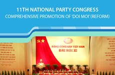 11th Party Congress: Comprehensive promotion of 'doi moi' (reform)