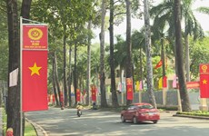 Vietnamese in Laos proud of homeland's achievements