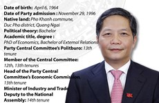 Politburo member, Chairman of the PCC's Economic Commission Tran Tuan Anh