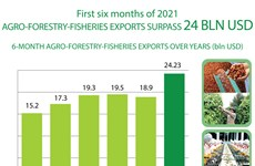 Agro-forestry-fisheries exports surpass 24 billion USD in H1