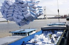 Rice prices hit highest level in 9 years, exports expected to prosper