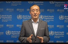 WHO: Vietnam Gov't making tremendous efforts and mobilizing resources to fight pandemic