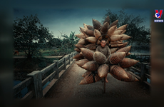 Vietnam photo on list of best travel photos nominated by AAP Magazine