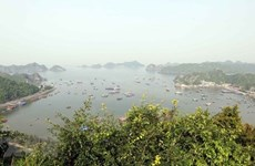 Cat Ba World Biosphere Reserve becomes attractive destination