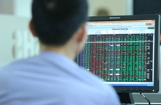 What is personnel structure of Vietnam Stock Exchange