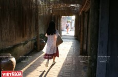 Traditional houses in ancient Duong Lam village attract visitors
