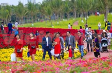 'Spring Colours' flower festival