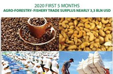 Five-month agro-forestry-fishery trade surplus nearly 3.3bn USD