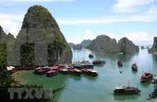 Tourists flock again to Quang Ninh after social distancing