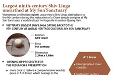 Largest ninth-century Shiv Linga unearthed at My Son Sanctuary