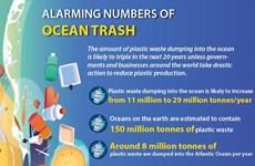 Alarming numbers of ocean trash