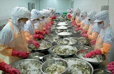 Shrimp exports forecast to reach 3.7 billion USD this year