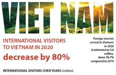 International visitors to Vietnam in 2020 decrease by 80 percent
