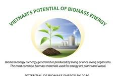 Vietnam's potential of biomass energy