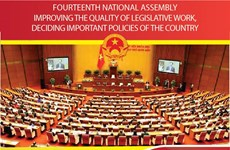 Fourteenth National Assembly: Improving the quality of legislative work, deciding important policies