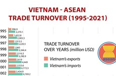 Vietnam-ASEAN trade turnover during 1995-2021 period