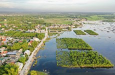 World Environment Day 2021: Restoring ecosystems
