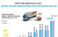 Import-export turnover surpasses 262 billion USD in first five months