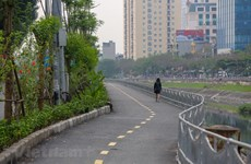 Hanoi's longest pedestrian street officially opens
