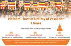Vietnam's three times hosting UN Day of Vesak