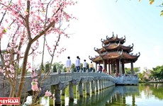 Ancient pagoda in Hung Yen