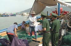 Fishermen join hands to overcome EU yellow card