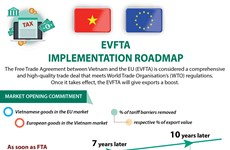 EVFTA implementation roadmap