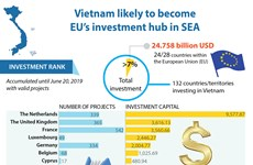 Vietnam likely to become EU's investment hub in SEA