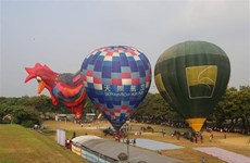 Hot air balloon festival enchants visitors