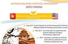 Vietnam-Malaysia strategic partnership keeps thriving