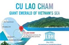Cu Lao Cham: Giant emerald of Vietnam's sea