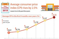 Average consumer price index rises by 2.5%