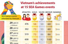 Vietnam's achievements at 15 SEA Games events