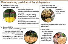 Mouthwatering specialties of Bac Ninh province