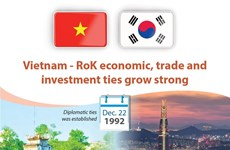 Vietnam - RoK economic, trade and investment ties grow strong