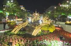 Nguyen Hue flower street to open to public