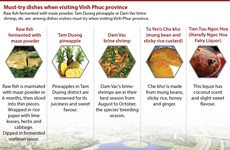 Must-try dishes when visiting Vinh Phuc province
